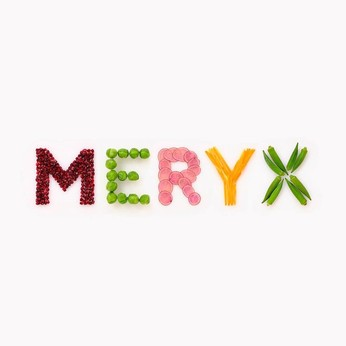 MERYX-FOOD ART